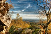 Moerschieder Burr Foto Nationalparkamt Birkenfeld 219